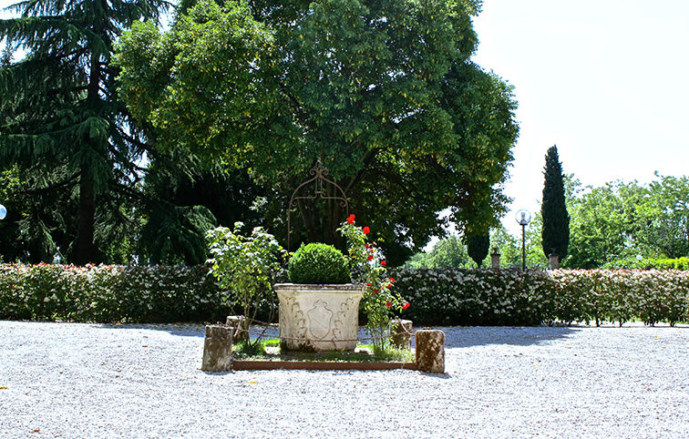 Matrimoni-in-Villa-Chiminelli-Terza-Foto-800